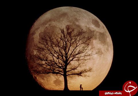 فازهای ماه را میشناسید؟ +معرفی ۸ فاز متفاوت و زیبای ماه