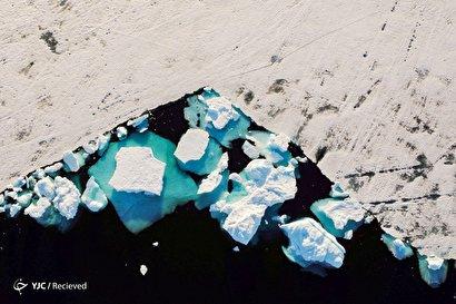 ذوب شدن قطب شمال