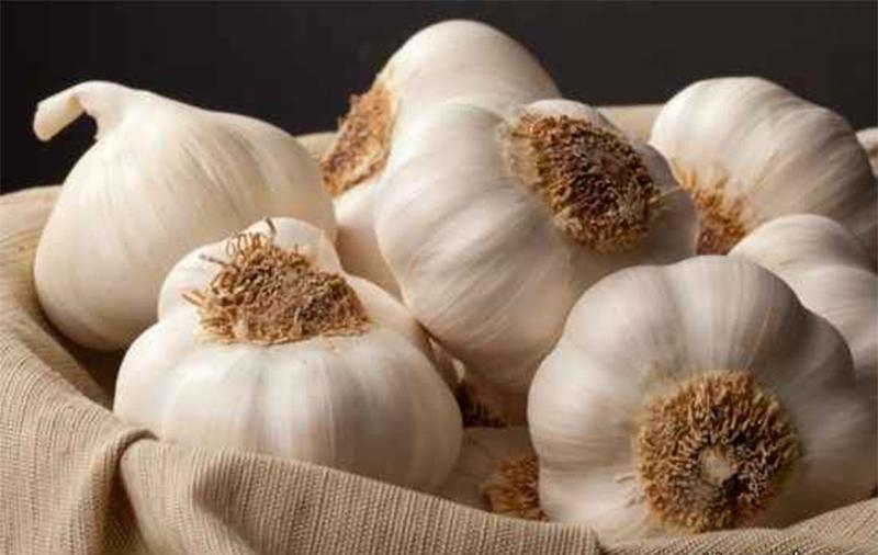 هانتینگتون چه افرادی را درگیر میکند؟/ مشکل کم خوابی را با این دانههای سفید رنگ برطرف کنید/ علائم قارچ ناخن چیست؟