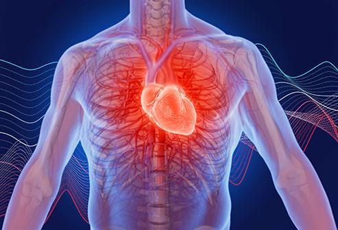 فرمولهایی که تپش قلب را کم میکند+ لیست ورزشها و خوراکیهای تقویت کننده قلب