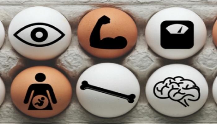 کولین چیست؟ / پیشگیری از انواع سرطان تا بیماریهای قلبی و افزایش حافظه با این ماده مغذی