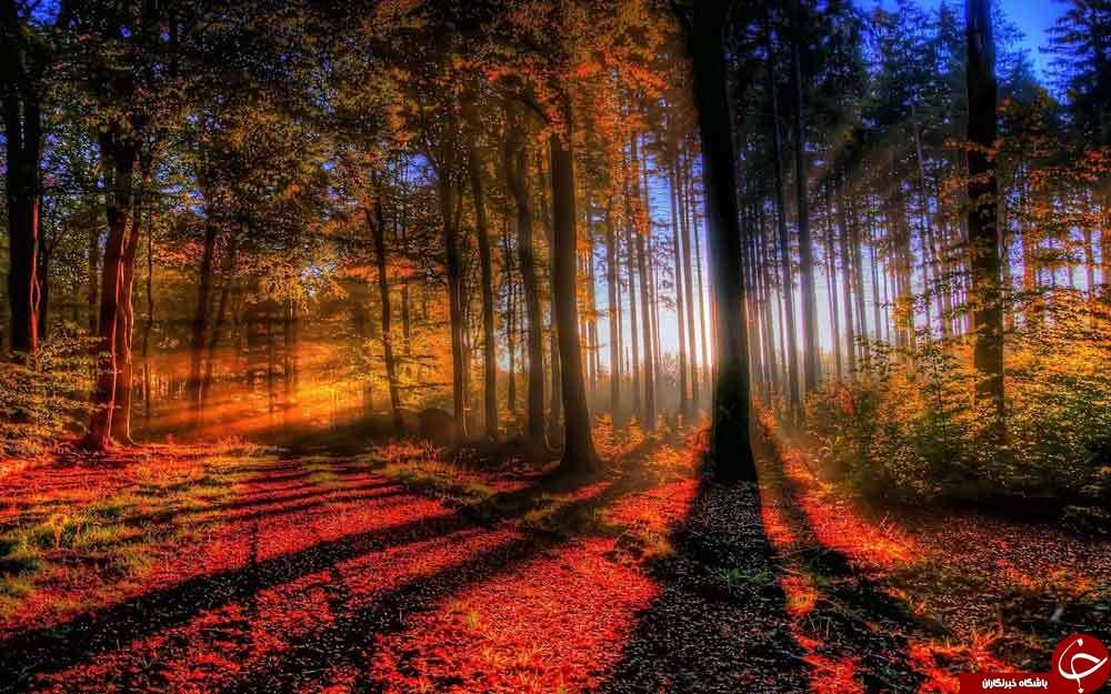 ترفندهایی برای یک عکاسی ایدهآل از طبیعت و مناظر