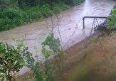 باشگاه خبرنگاران -بارش باران و پرآب شدن رودخانه در کلاچای + فیلم