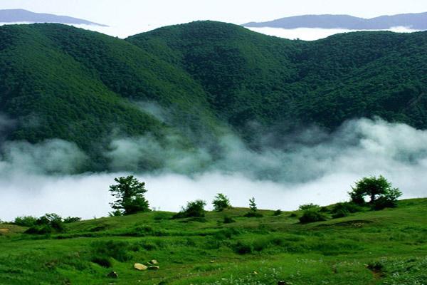 ناهماهنگی در اجرای فعالیت های توسعه ای از بزرگترین چالش های حفاظت از طبیعت است