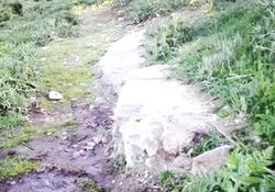 فیلمی از چشمه آب معدنی در میانه