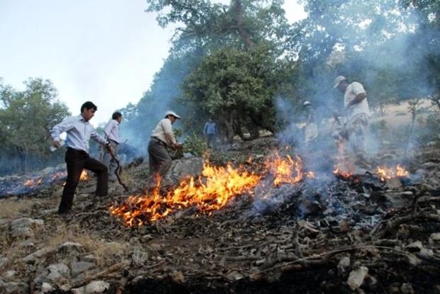 آتش به جان خود نزنیم/طبیعت درٌ گرانی است، پس قدرش را بدانیم