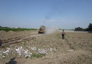 باز گشت ۱۰ هزار مربع از زمینهای کشاورزی آمل به چرخه تولید