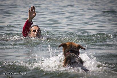 مانور سگهای جستجو و نجات هلالاحمر