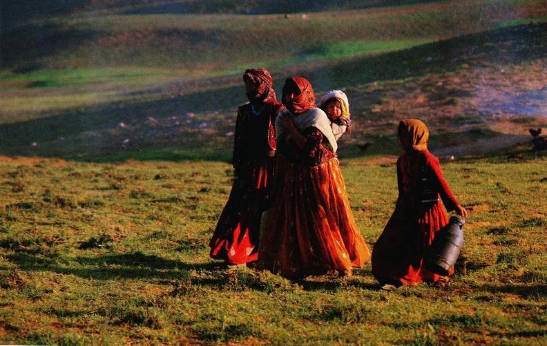 همزاد فرهنگ کهن اردبیل از دیروز تا امروز/تقلید نابجایی که فرهنگ بومی را قربانی میکند