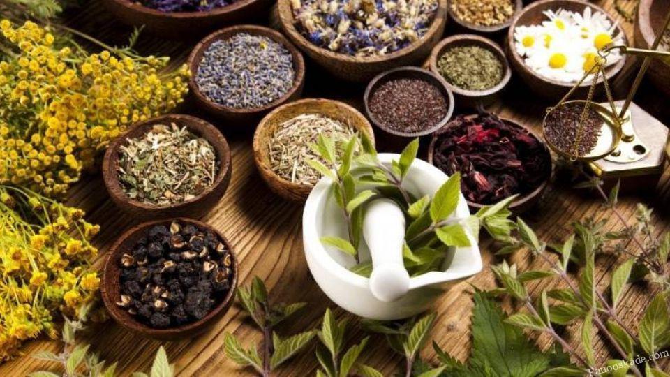 چالش واردات قاچاق برخی ادویههای مشهور به کشور/ چگونه داروهای گیاهی با کیفیت را بشناسیم؟