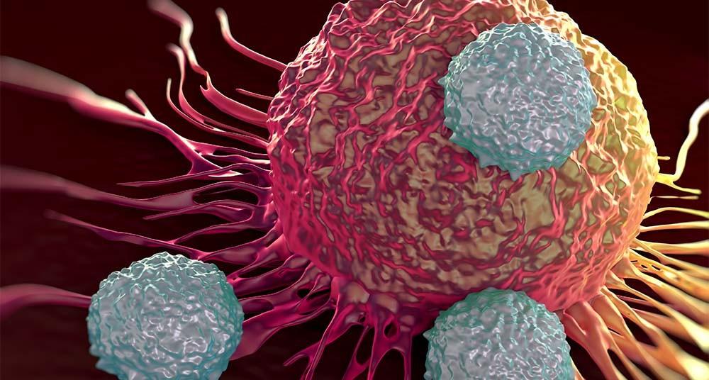 ویروسی موثر در درمان سرطان مثانه/ بهترین مواد برای جایگزینی پاستیل/ عوارض تنهای که نمیدانستید