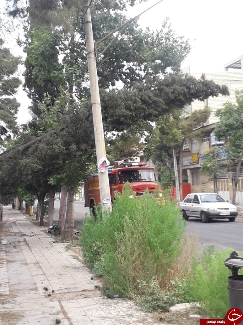 وزش باد شدید در فسا حادثه آفرید/آتش سوزی تیر برق در فسا