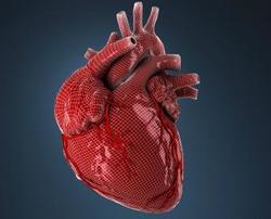 حمله قلبی را بیشتر بشناسید + علائم
