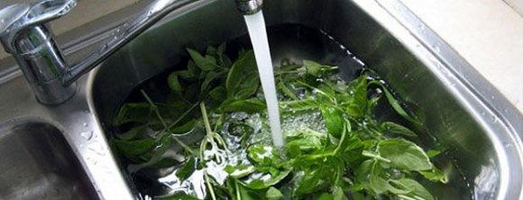 روشهای ساده برای ضدعفونی و از بین بردن سموم سبزیجات