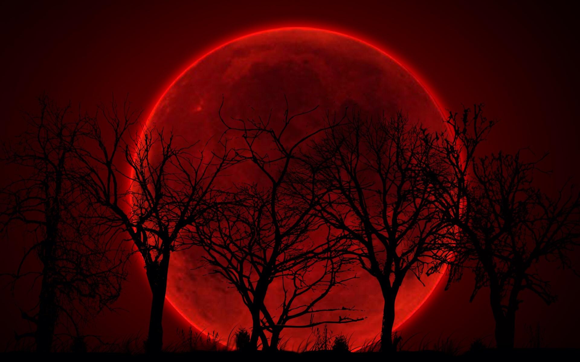 فرصت چند ساعته تماشای ماه گرفتگی را از دست ندهید +زمان آغاز و پایان خسوف