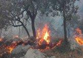 آتش سوزی ۱۵ هکتار از مراتع پاتاوه