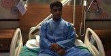 فرنگی کار آسیب دیده مازندرانی جراحی میشود