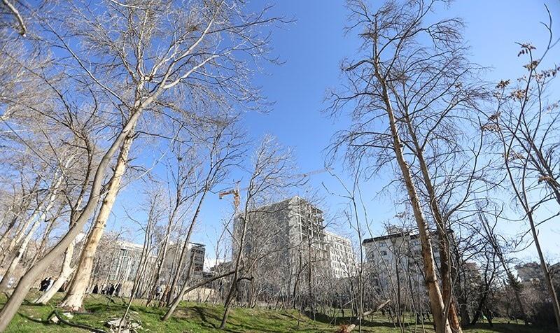 تهران دارای بوستان پدر میشود