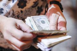 پیشبینی نرخ دلار در چند روز آینده/ دلالان از وضعیت فعلی بازار در شوک فرو رفتند!
