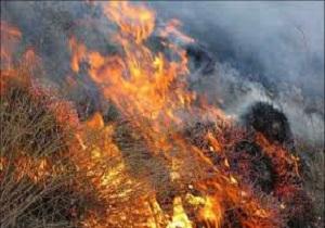 آتش به جان مراتع جاده قم- اراک افتاد