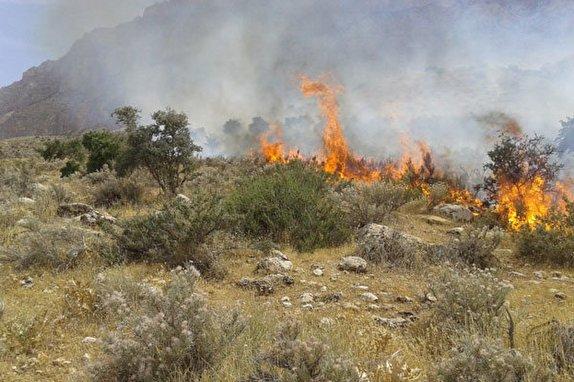 استقرار توده هوای گرم تا پایان هفته در استان زنجان/خطر حریق در کمین عرصه های طبیعی استان