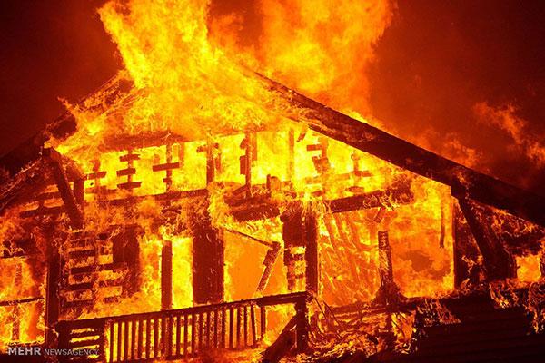 راههای جلوگیری از آتشسوزی در طبیعت