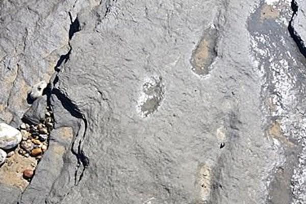 ردپای ۹۵۰ هزار ساله انسان کشف شد+تصاویر