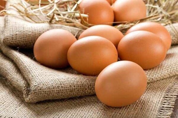 افزایش یک هزار تومانی نرخ تخم مرغ در بازار/۶۰۰ تن تخم مرغ مازاد از سطح بازار جمع آوری شد