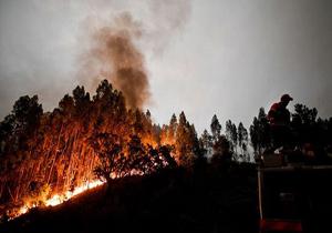 آتشسوزی گسترده اراضی جنگلی پرتغال را فراگرفت