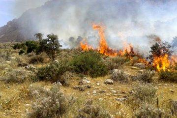 تکذیب دستگیری عاملان آتشسوزیهای اخیر مراتع ایلام