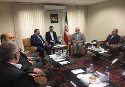 نایب رئیس حماس با رئیس شورای راهبردی روابط خارجی دیدار کرد
