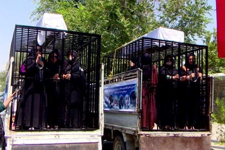 نامزدهای معترض انتخابات پارلمانی خود را در قفس حبس کردند!