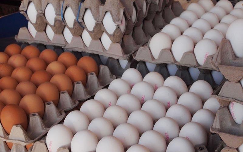 مازاد تولید بر افت قیمت تخم مرغ در بازار دامن زد/قیمت هر کیلو تخم مرغ ۶ هزار و ۴۰۰ تومان
