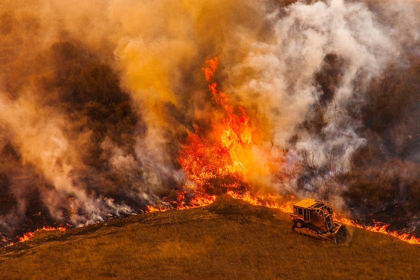 گرفتاری هفت هتکار از مراتع خراسان رضوی در دام آتش