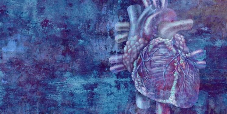 اسیدچرب امگا ۶، محافظی برای قلب و عروق