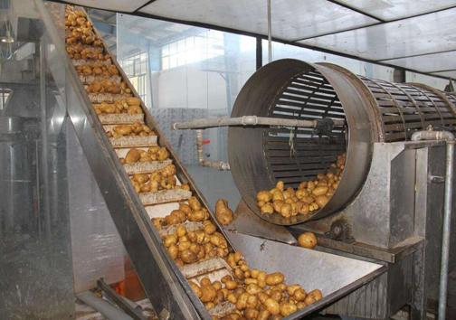 صنایع تبدیلی دروازه ورود محصولات کشاورزی به بازارهای جهانی/سرازیری سود تولید در جیب دلالان