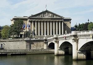 دستگیری مردی که پرچم مجلس فرانسه را به پایین کشد