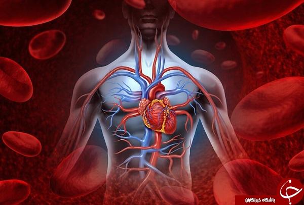 کمی بیشتر از گلبولهای قرمز خونتان بدانید و شگفت زده شوید!