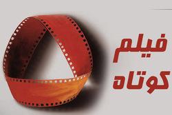 ارسال ۸۰ اثر به جشنواره فیلم کوتاه و فیلمنامه نویسی زنجان