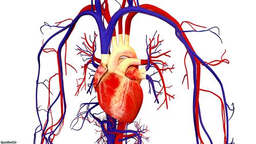 آسیبهای اختلال در عملکرد دستگاه گردش خون
