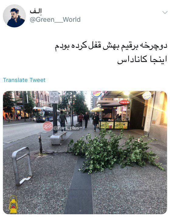 اتفاقی بسیار عجیب در یکی از خیابانهای کانادا +تصویر
