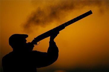 محکومیت چهار تبعه خارجی متهم به قاچاق پرندگان شکاری