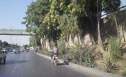 عجیب و غریبترین موتوسواری در اصفهان + فیلم