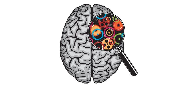 خوراکیهای که دشمن مغز شما میشوند