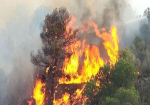 تخلیه مناطق مسکونی در اسپانیا در پی آتش سوزی جنگلی