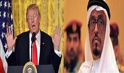 وقتی ترامپ صدای حکام عرب را درمی آورد/ چرا ترامپ به ما میرسد شیر است ولی در برابر ایران خرگوش! +فیلم