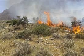کاهش آتش سوزی پوشش های گیاهی در خنداب