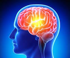 راهکارهای سنتی برای برای بهبود حافظه/ تاثیر شگفت انگیز خواب بر سلامت مغز