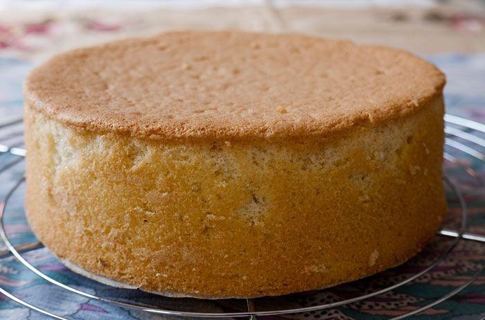 باشگاه خبرنگاران -طرز تهیه کیک اسفنجی ساده و آسان