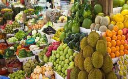 از آفریقا تا ایران/ میوههای عجیب و غریب خارجی چطور سر از میادین میوه و تره بار کشور درآوردند؟ + فیلم